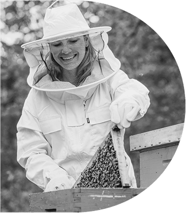 odživost pčela